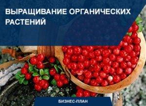 выращивание органических растений