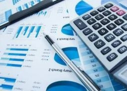 Services Maxrise-Consulting +38(068)088-68-62