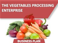 Business Plan of the Vegetables Processing Enterprise
