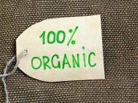 заказать анализ рынка органики