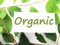 заказать маркетинговое исследование рынка органики