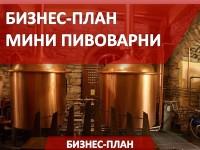 Бизнес-план мини пивоварни