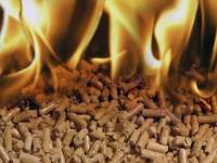 глобальный рынок древесных пеллет
