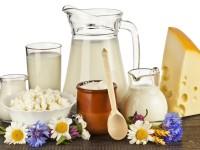 рынок молочной продукции польши