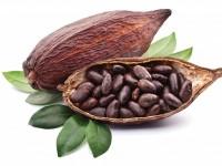 Рынок какао Франции