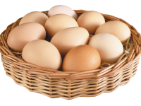 Рынок яиц Канады