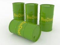 Рынок биодизеля США