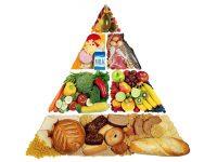 Маркетинговое исследование рынков питания