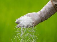 Импорт пестицидов в Россию